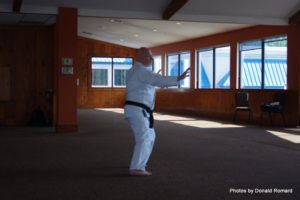 2016-budo-camp-tai-chi-form